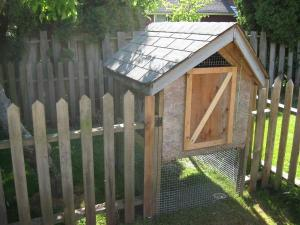 Convert a doghouse to a chicken coop
