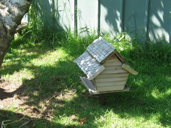 Chicken feeder made from bird feeder